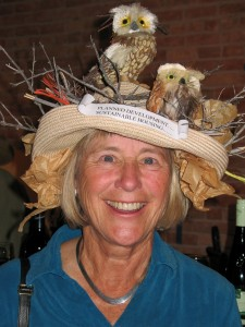"""Hat with Birds,"" fundraiser for sustainable housing in Teton Valley, Idaho"
